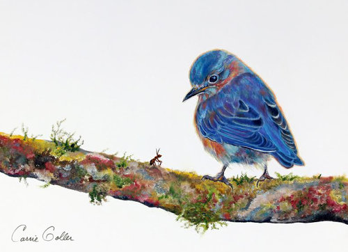 Greeting card mix birds bees carrie goller gallery greeting card mix birds bees m4hsunfo