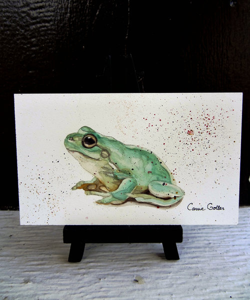 prints available original sold croaker watercolor 3 x 5 on