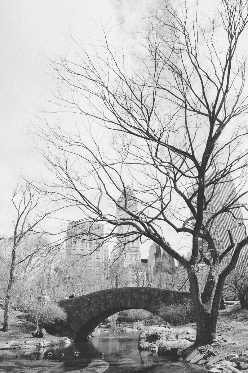 4-new-york-engagement-central-park-susanne-wysocki-hochzeitsfotograf.jpg