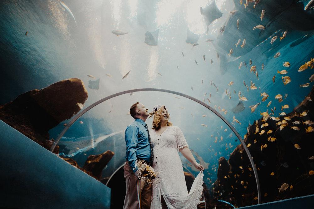 georgia-aquarium-atlanta-photographer