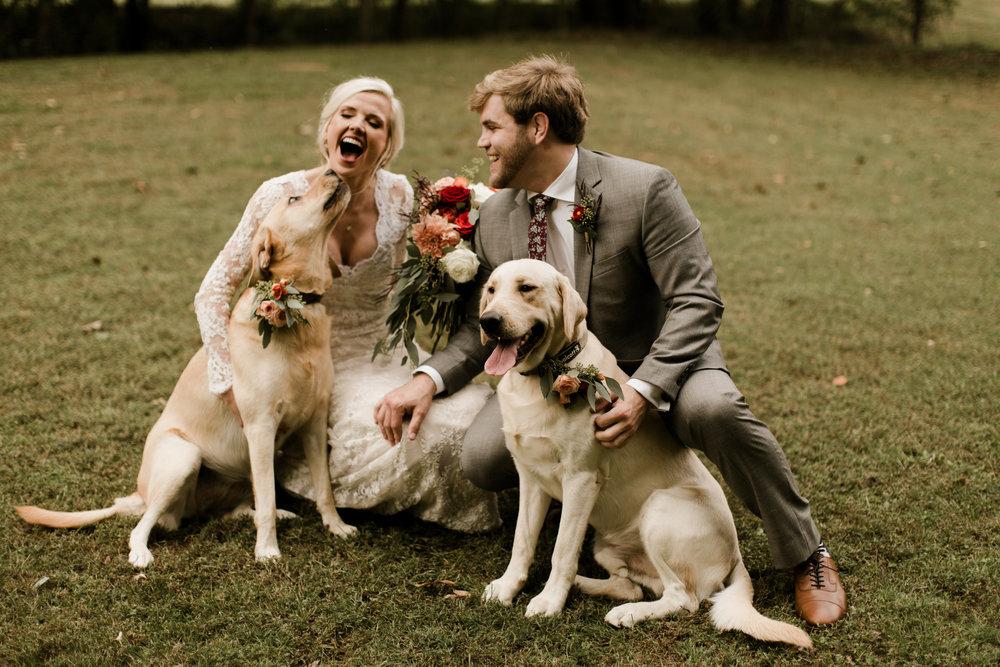 dogs-wedding-photographer