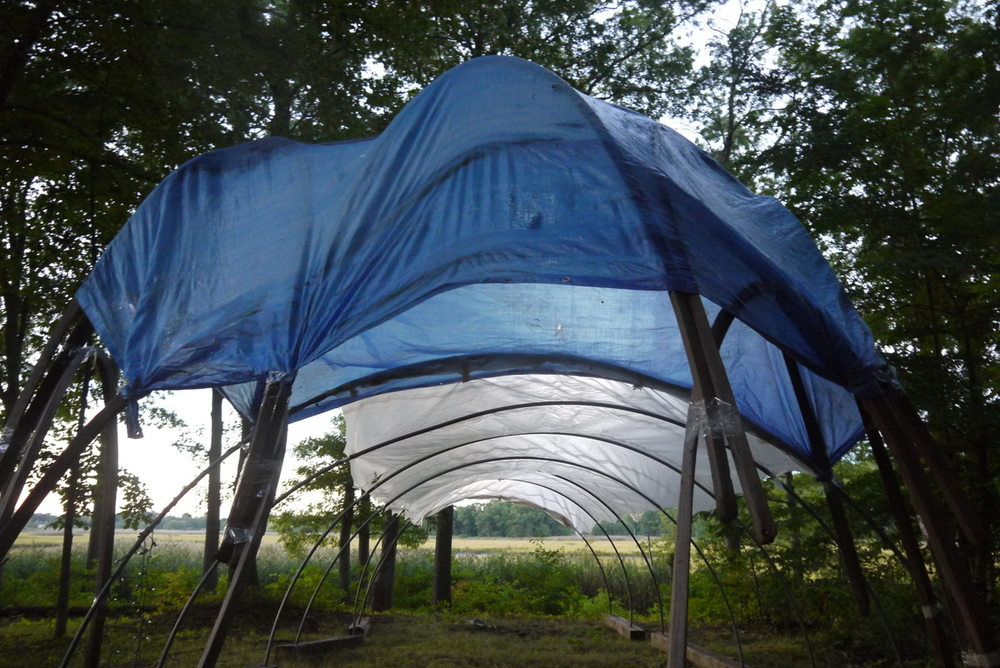 Kit and Jacqueline and I made a party tunnel for their birthdays--quickly, in the late afternoon before the sun went--with tape, tarps, and hoop house pipes.