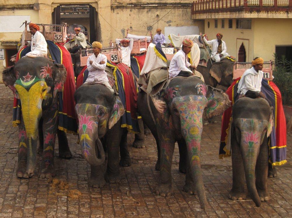 Elephant Riders.jpg