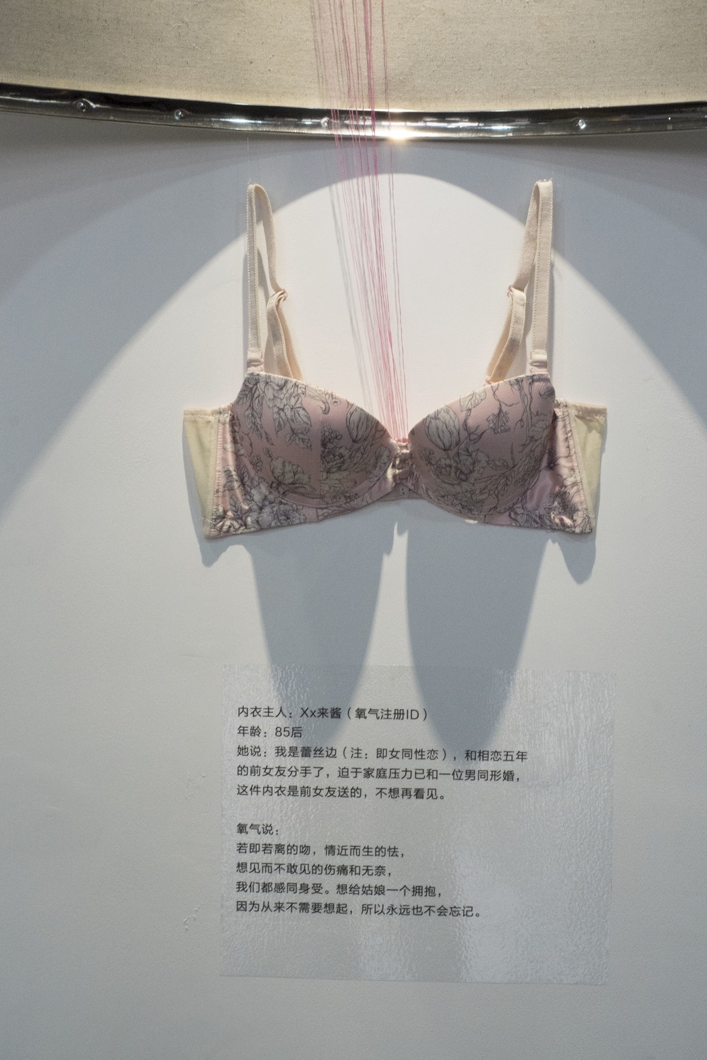 edited_bra_display.jpg