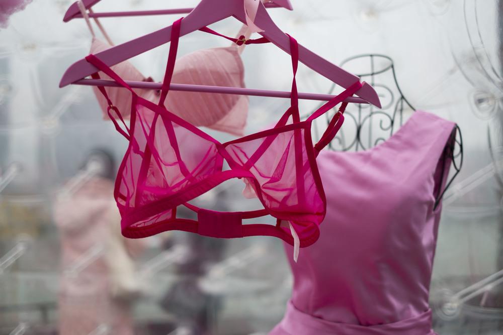 pink_bra.jpg