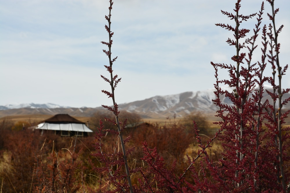 Financial Times: A New Eco Camp in China's Gansu Province