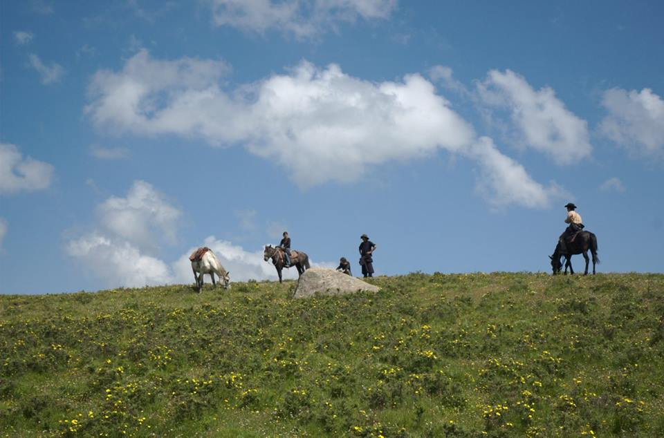 Blog_Horse journey on the grassland_2.jpg