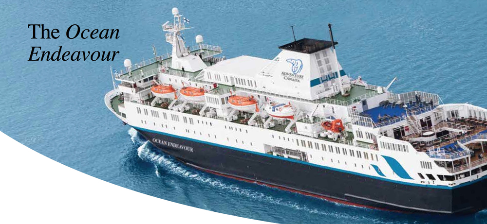 vessels expedition ships ocean endeavour