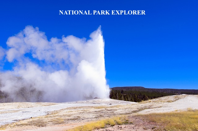 yellowstone tour.jpg