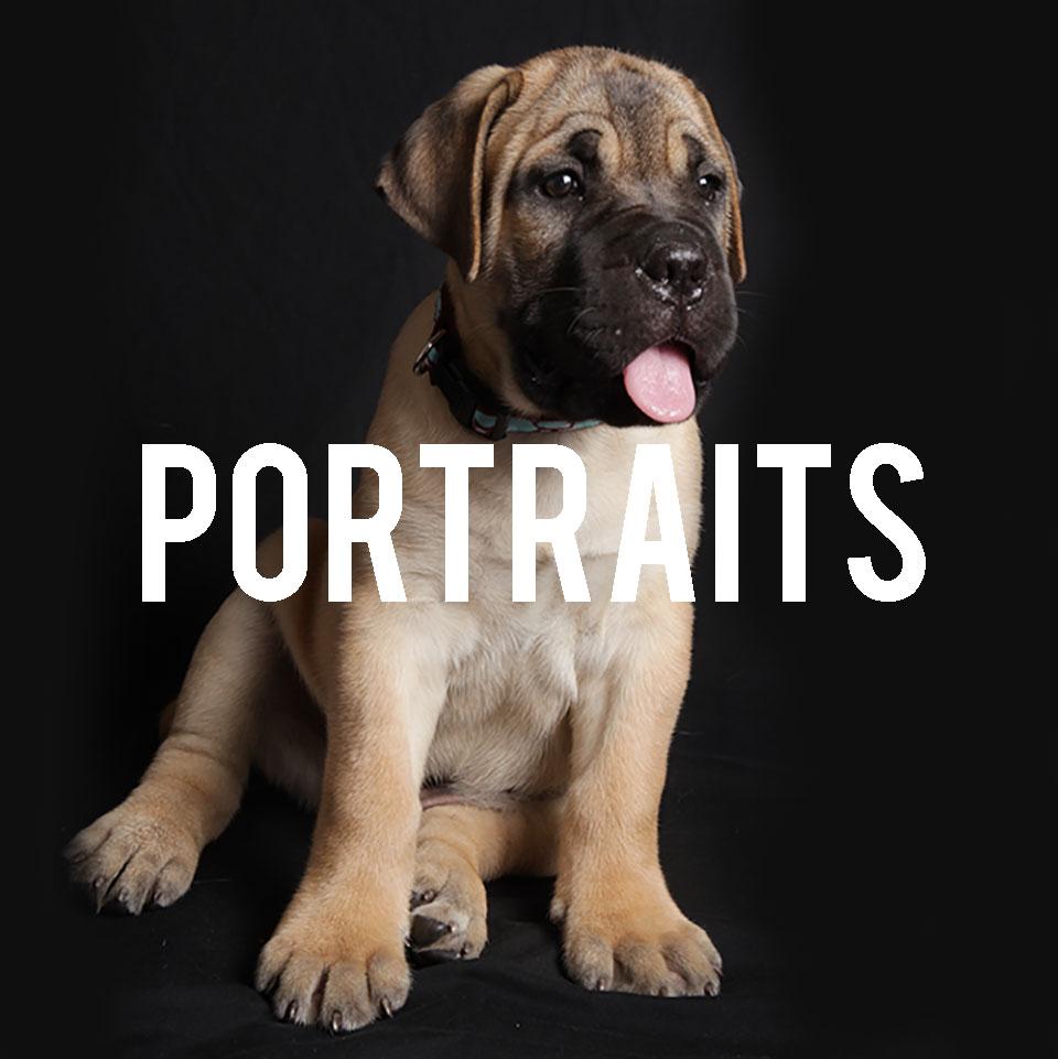 DES-MOINES-PORTRAIT-PHOTOGRAPHER