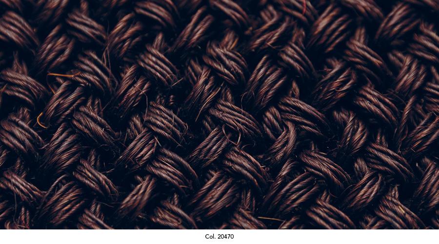 maglia_colorits11.jpg
