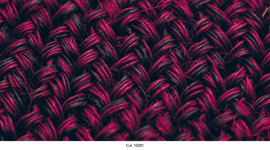 maglia_colorits20.jpg