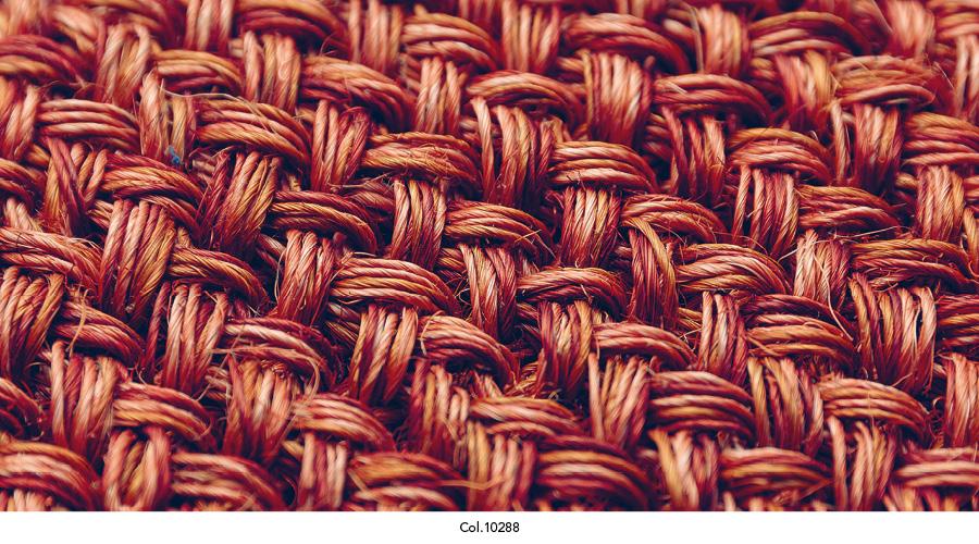 maglia_colorits21.jpg