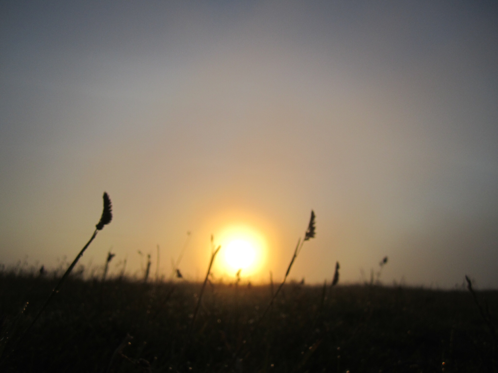 Summer solstice at Ivinghoe beacon
