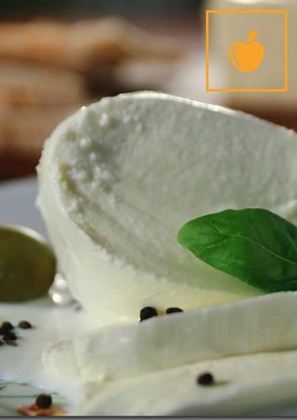 Mozzarella_mit_Oliven_und_getrockneten_Tomaten