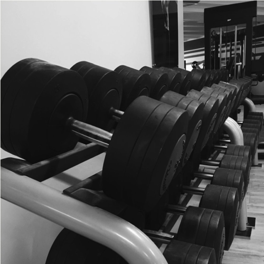 Beispiel Fitnessstudio PT HP.jpeg