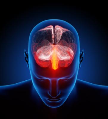 Dolor crónico, TEPT y cerebro
