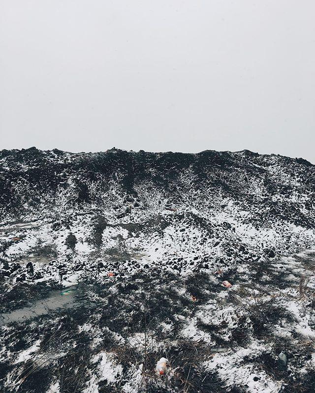Snowy 🌎