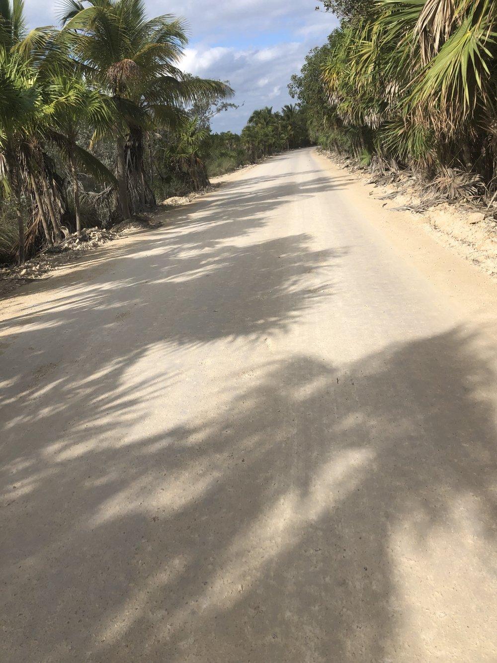 My morning bike ride to Sian Ka'an