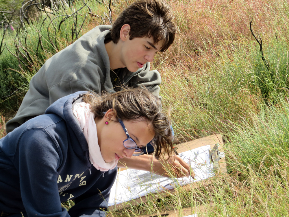 students drawing in the landscape