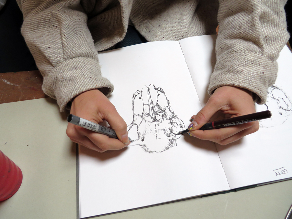 blind contour drawing exercises