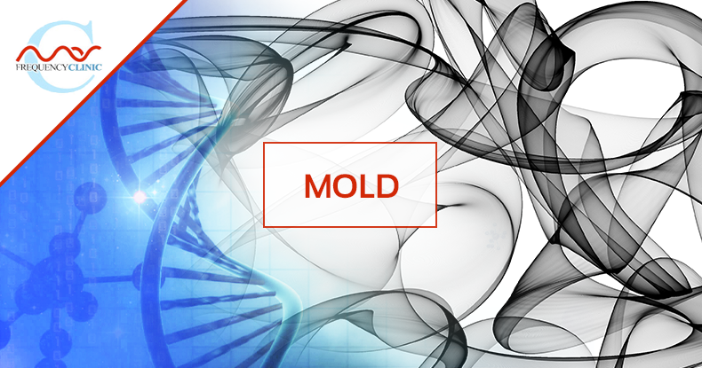 mas-sajady-program-reviews-frequency-mold.png