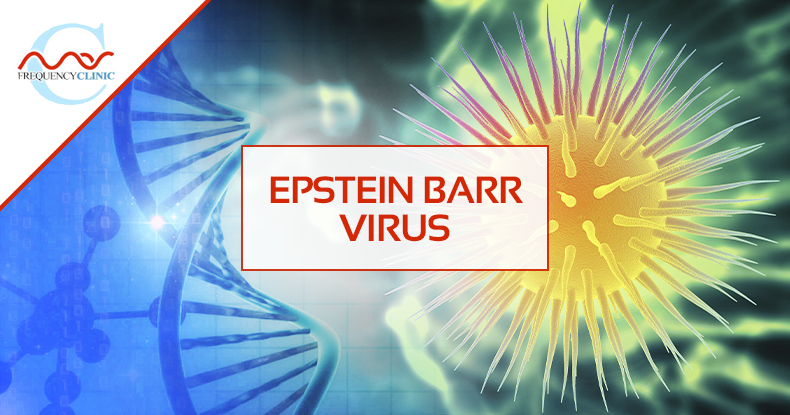 mas-sajady-program-reviews-frequency-Epstein+Barr+Virus.png
