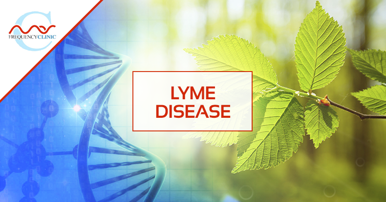 mas-sajady-program-reviews-frequency-lyme.png