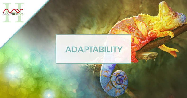 mas-sajady-programs-group-healing-Adaptability.png