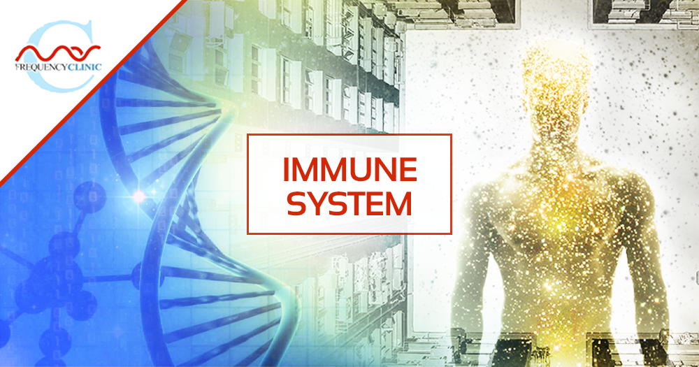 mas-sajady-program-reviews-frequency-immune-system-B.png