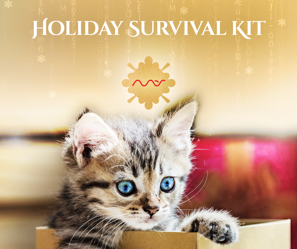 mas-sajady-holiday-boutique-2018 holiday survival kit.png