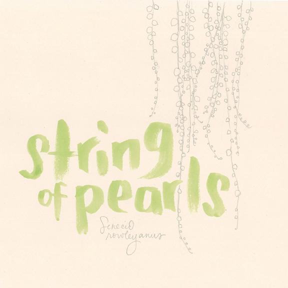string_of_pearls_web.jpg