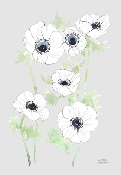 anemone_gray.jpg