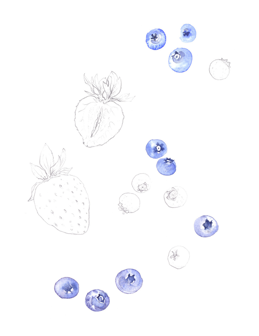 blueberries_strawberries1_web.jpg