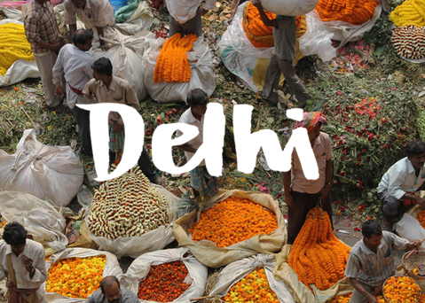 delhi_bharat_pic_lightened.jpg
