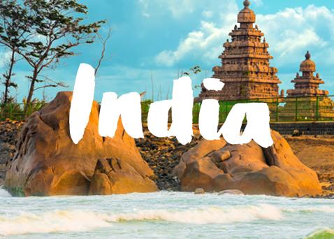 India2017_a.jpg