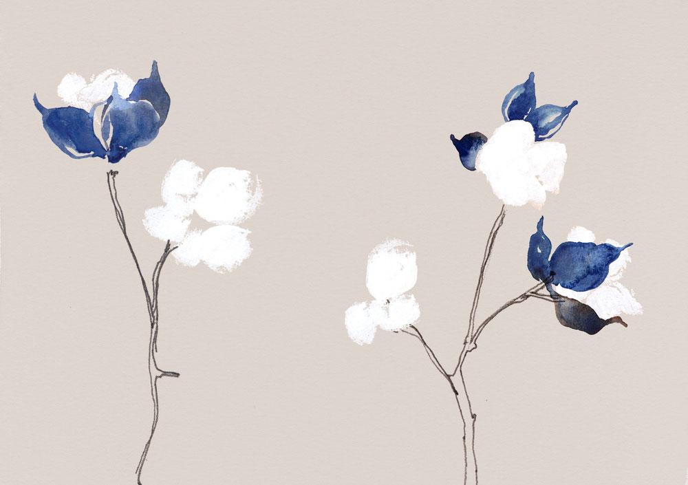 erin-ellis-illustration-botanical-watercolor-cotton.jpg