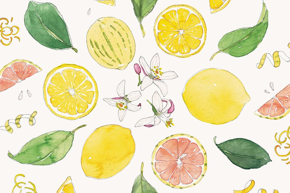 Lemons-mandala-illustration-by-Erin-Ellis-Tampa-Bay-Times-Taste.jpg
