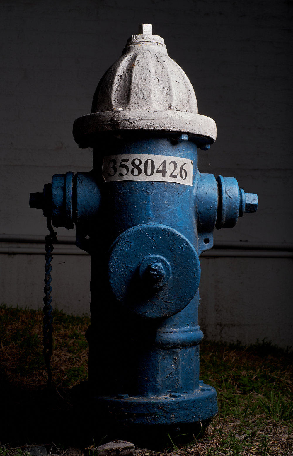 Hydrant Portrait #2