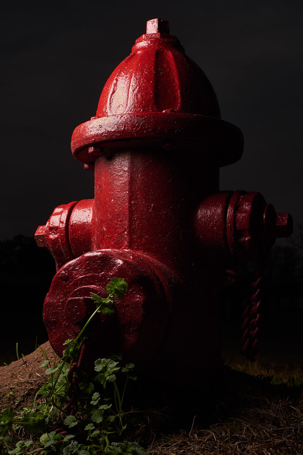 Hydrant Portrait #10