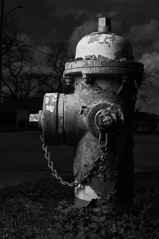 Hydrant Portrait #8b