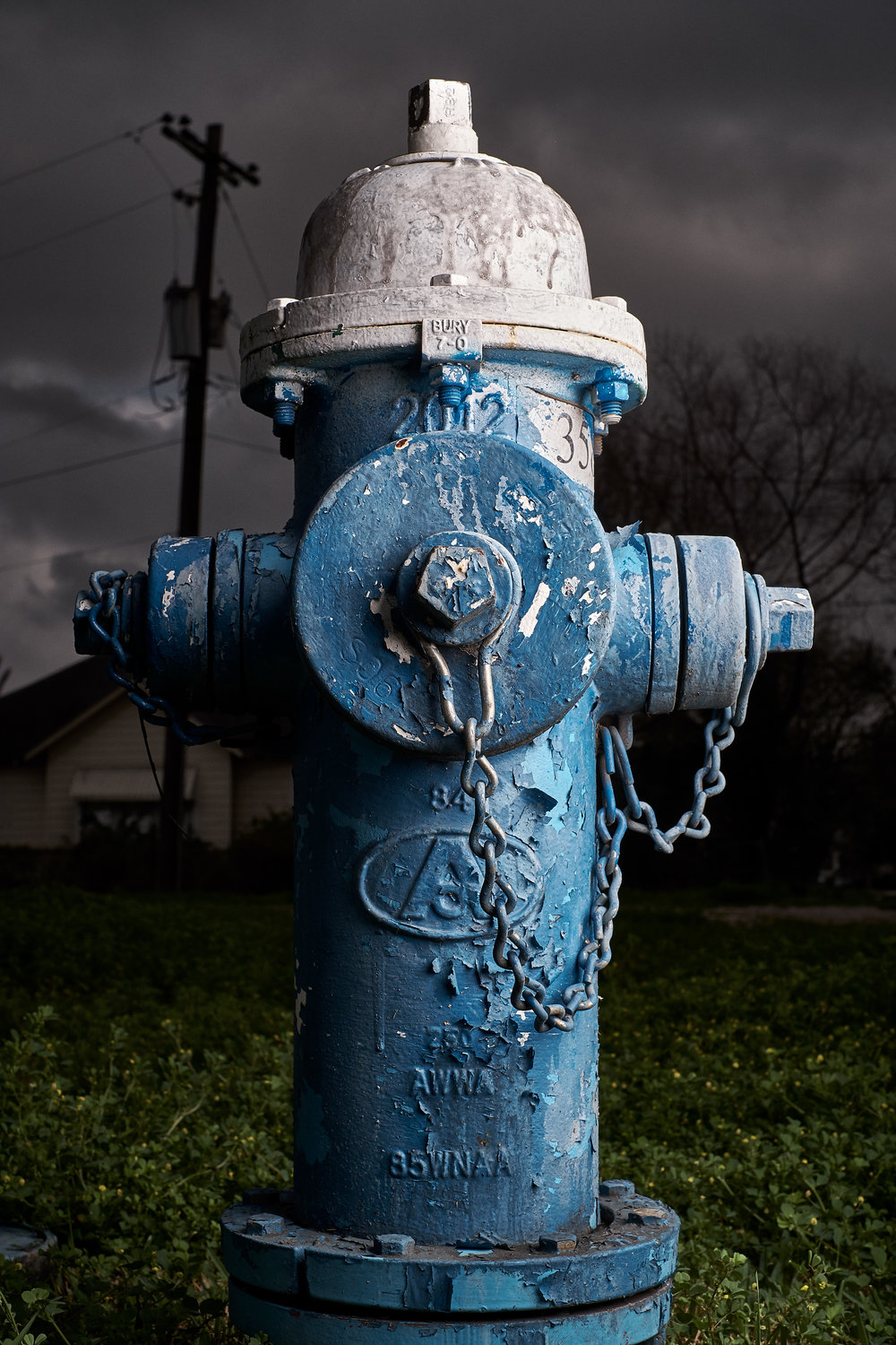 Hydrant Portrait #19