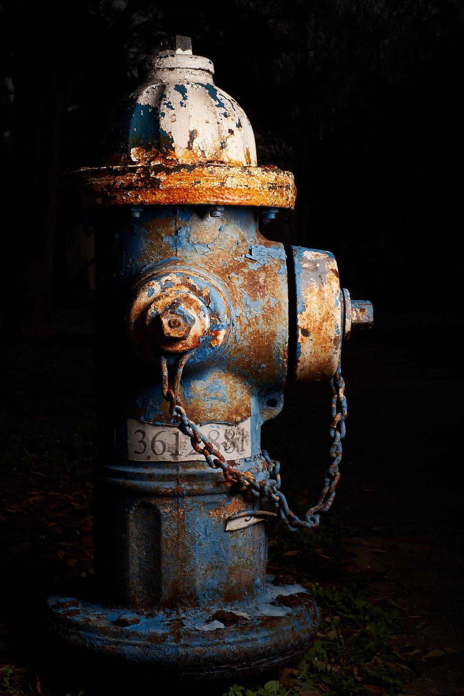Hydrant Portrait #5b