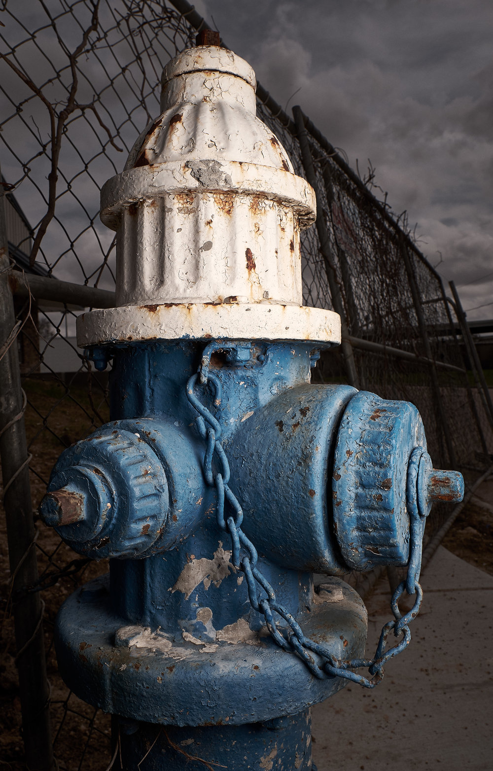 Hydrant Portrait #22