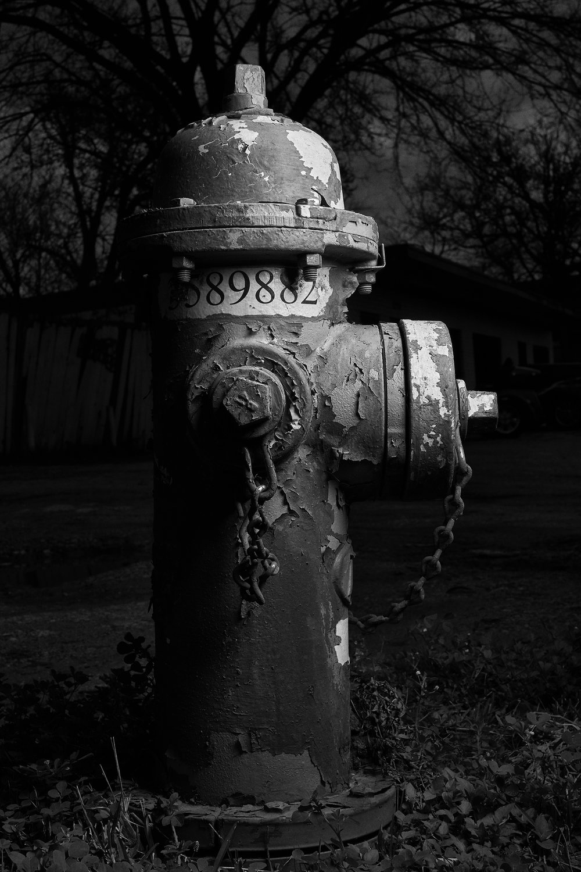 Hydrant Portrait #8c