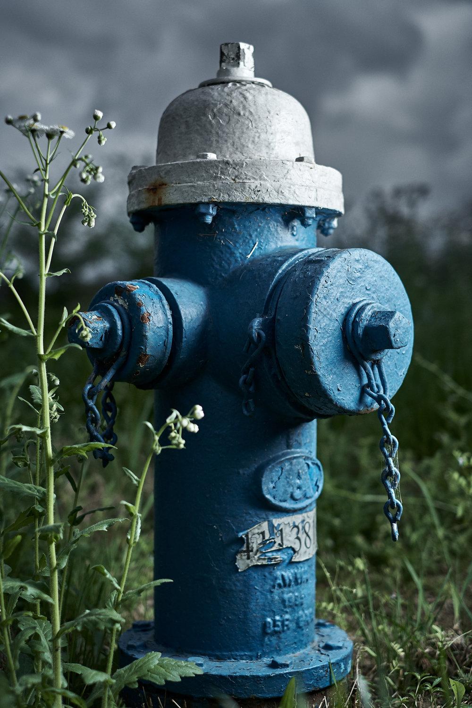 Hydrant Portrait #31d