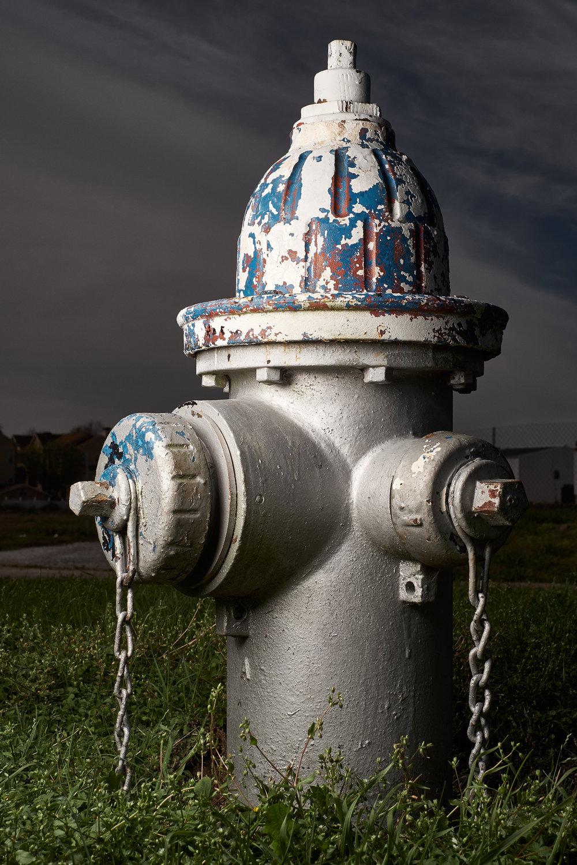 Hydrant Portrait #36b