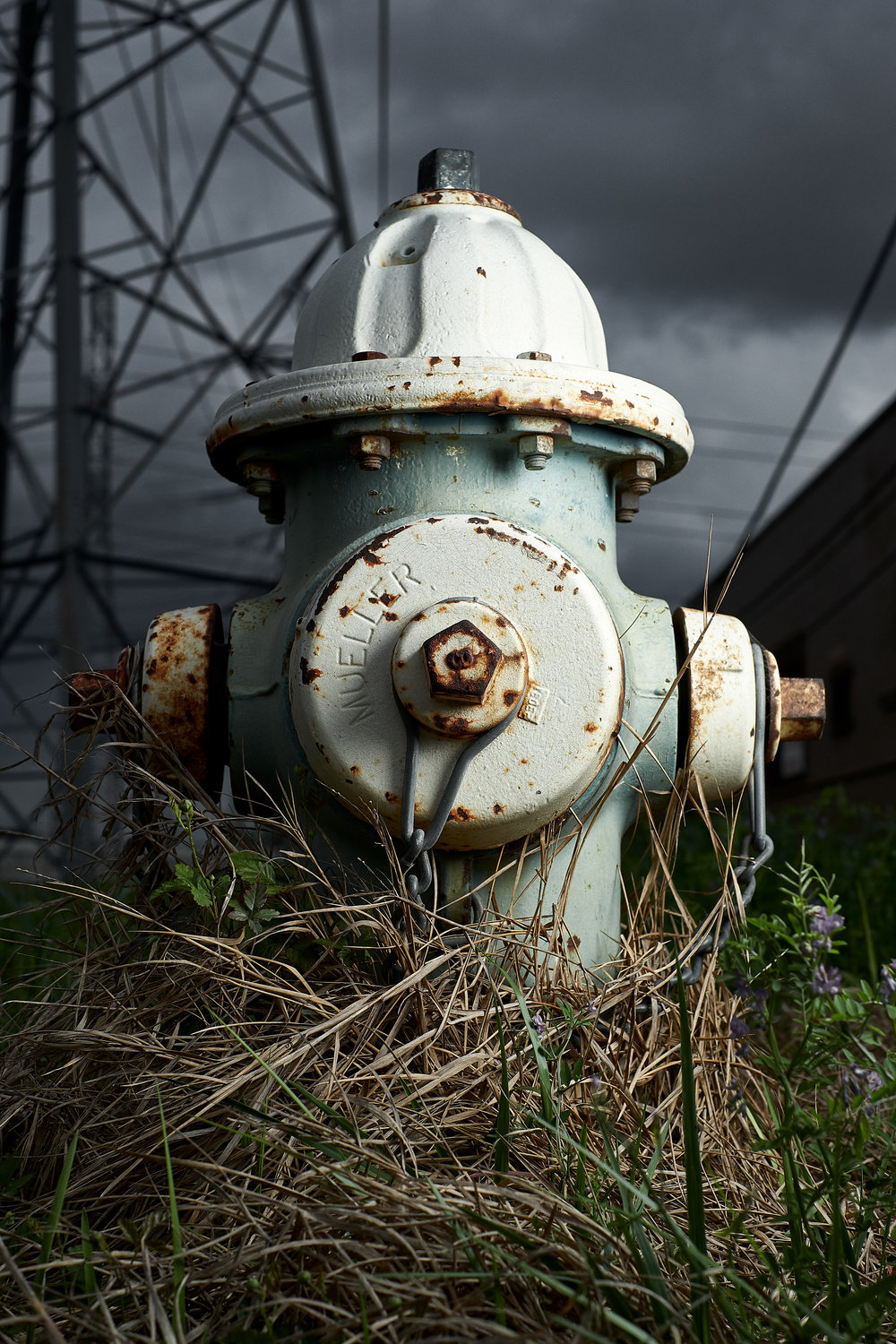 Hydrant Portrait #29
