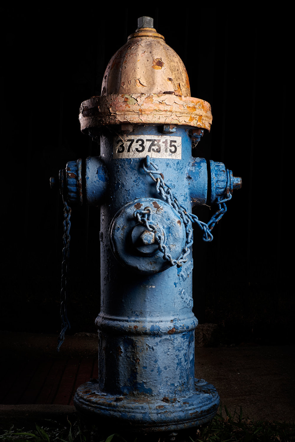 Hydrant Portrait #56