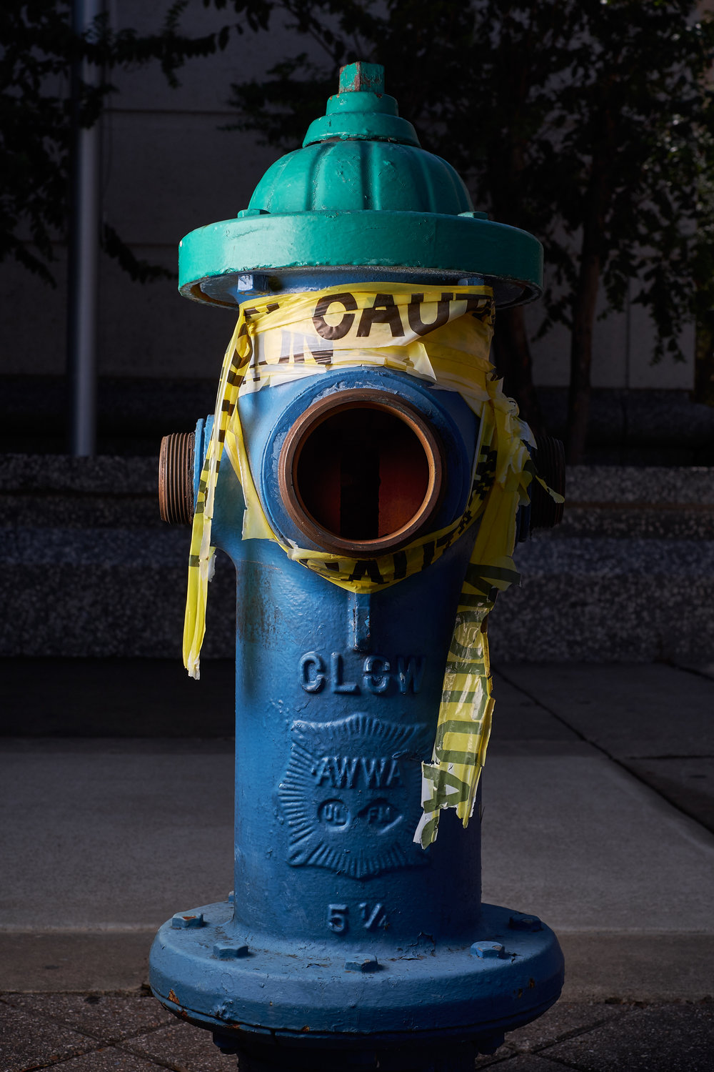 Hydrant Portrait #42